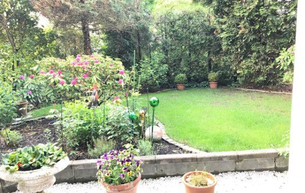 Bestlage Herzorgpark-Wunderschöne 3-Zimmer-Wohnung mit Terrasse und Garten